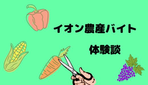 【短期】イオン農産バイトの仕事内容は?楽・きつい面を紹介!